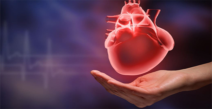 Plenareno Heart Congress at Dubai, UAE during July 13-14, 2020